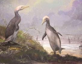 Phát hiện hóa thạch loài chim khổng lồ mới ở Bắc bán cầu