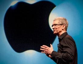 Tim Cook từng bị khuyên can khi nhận lời làm việc tại Apple