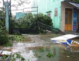 6 người chết và mất tích, 49 người bị thương do bão số 11