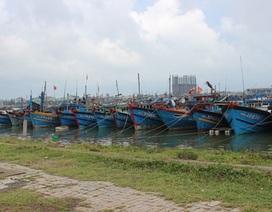 Hỗ trợ đến 5 triệu đồng các tàu cá thiệt hại do bão