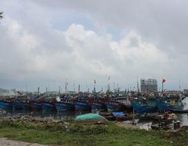 Hai tàu cá cùng hàng chục ngư dân gặp nạn trên biển