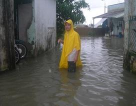 """Đà Nẵng tìm giải pháp """"sống chung"""" với ngập lụt"""
