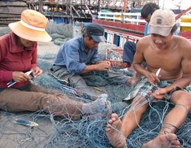 Bộn bề khó khăn, ngư dân vẫn quyết vươn khơi, bám biển