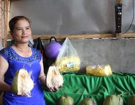 Bán một quả dừa sáp mua được nửa tạ thóc