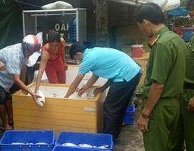 Phát hiện gần 1 tấn cá điêu hồng thối trong quán cơm