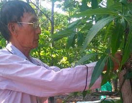 """Người bị """"án oan"""" HIV ở Bình Thuận yêu cầu bồi thường trên 1,5 tỷ đồng"""