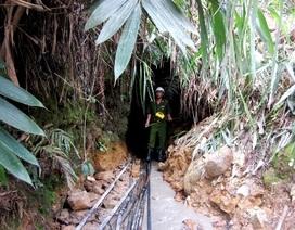 Xử lý triệt để nạn khai thác vàng trái phép ở hồ Phú Ninh