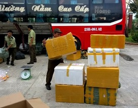 Lực lượng CSGT liên tục bắt hàng lậu