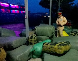 CSGT Quảng Nam bắt giữ nhiều tấn hàng lậu