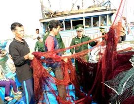 Ngư dân tố tàu hải cảnh Trung Quốc cướp phá: Khống chế bằng roi điện?