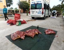 """Bắt giữ hàng trăm kg """"thịt bẩn"""" trên xe khách"""