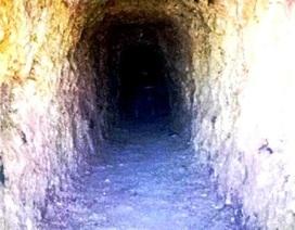 Bí thư huyện ủy đào hầm xuyên núi để lấy vàng hay ủ rượu?