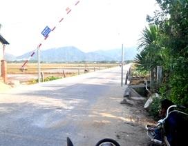 Quảng Nam: Xã lập barie thu tiền xe chở keo, dân bức xúc