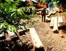 Con trai nguyên Trưởng công an xã phá rừng và san ủi đường trái phép