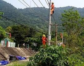 Điện trên đảo Cù Lao Chàm bị cúp bởi... sóc