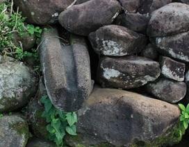 Trùng tu hệ thống giếng cổ nghìn năm