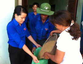 Góp lúa giúp sinh viên nghèo được đến trường