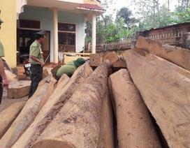 Phát hiện hơn 26m3 gỗ lậu ở gần cửa khẩu