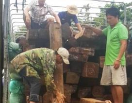 Phát hiện lô gỗ quý được ngụy trang chở trên xe tải