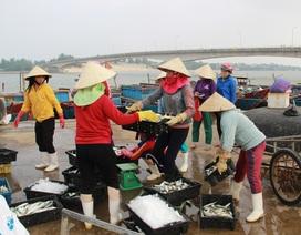 Tỉnh Quảng Trị đã chi trả hơn 220 tỷ đồng hỗ trợ vụ Formosa