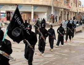 Đức cảnh báo IS có thể bắn hạ máy bay chở khách