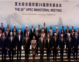 APEC nhất trí hình thành khu vực thương mại tự do riêng