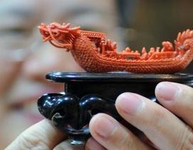 Thuyền trưởng Trung Quốc lĩnh án phạt vì đánh bắt san hô quý trái phép
