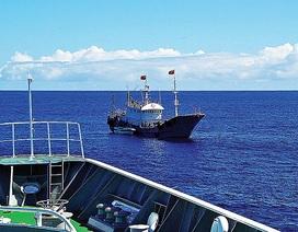 Nhật Bản xét xử thuyền trưởng Trung Quốc khai thác trái phép san hô