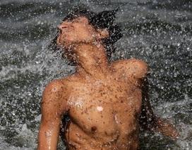 Số người chết vì nắng nóng tại Ấn Độ vượt 1.000 người