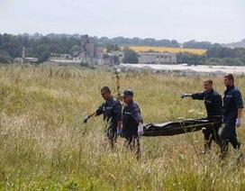 Thảm kịch máy bay MH17: Một năm nhìn lại