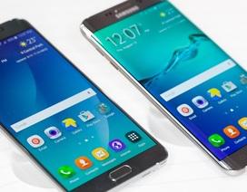 Nên mua Samsung Galaxy S6, S6 Edge, S6 Edge+ hay Note 5?