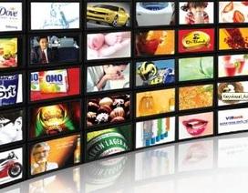 Chọn dịch vụ truyền hình cáp nào tại Việt Nam?