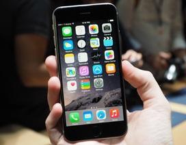 iPhone 6 vẫn đang là phiên bản hot nhất trên thị trường hiện nay