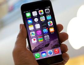 Bạn có phải tín đồ của iPhone?