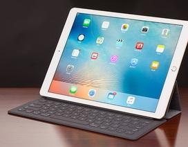 iPad đang phổ biến với doanh nghiệp hơn người tiêu dùng