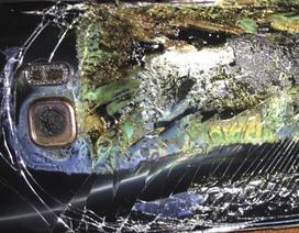 Nếu như Samsung tiêu hủy tất cả máy Note7, đây có thể sẽ là thảm họa môi trường