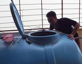 Khánh Hoà: Sốt xuất huyết tăng báo động, huy động học sinh diệt bọ gậy
