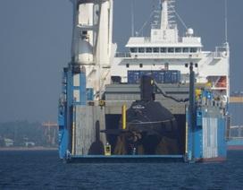 """Tàu ngầm Kilo thứ 5 đã """"hợp sức"""" cùng 4 tàu ngầm ở cảng Cam Ranh"""