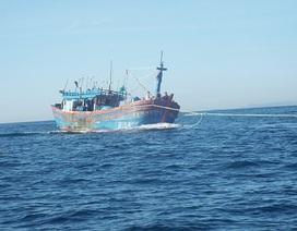 Tàu cá Quảng Ngãi cùng 7 ngư dân gặp nạn ngoài khơi Nha Trang