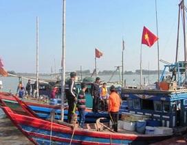 Xử lý hàng loạt tàu cá vi phạm đánh bắt và bảo vệ nguồn lợi thủy sản