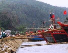 Bị tời lưới quấn, một thuyền viên tử nạn trên biển