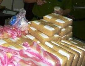 Bắt giữ 2 đối tượng tàng trữ hơn 23kg heroin