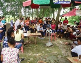 Thanh tra Chính phủ đề nghị giải quyết vụ giáo viên bị chấm dứt hợp đồng