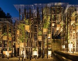 Việt Nam tham gia triển lãm kiến trúc quốc tế tại Sydney
