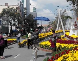 Người dân Tây Đô đội nắng chụp ảnh trước giờ dọn đường hoa