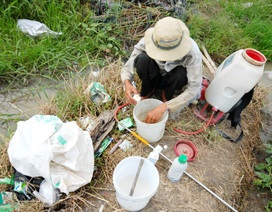 Kinh hãi nhìn vỏ thuốc trừ sâu vứt tràn trên đồng ruộng