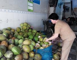 """Nắng nóng kéo dài, giá dừa tươi được dịp """"leo thang"""""""