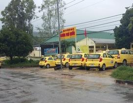 Hàng trăm tài xế taxi ở Phú Quốc đình công