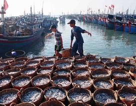 Gắn chặt kinh tế đất liền, biển đảo với bảo vệ chủ quyền