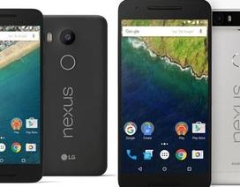 Google sẽ giới thiệu đến 2 mẫu Nexus mới vào cuối năm nay